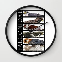 Falcons of the World Wall Clock