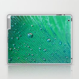Emerald Feather Laptop & iPad Skin