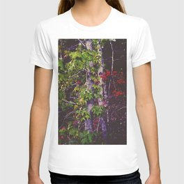 October Forest T-shirt