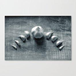 Garlic Moon - Kitchen Witch 1 Canvas Print