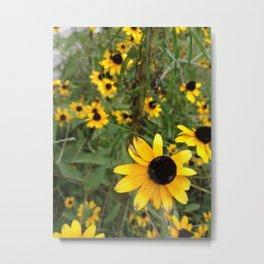 Flower Weather. Metal Print