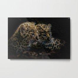 Amur Leopard cubs Metal Print