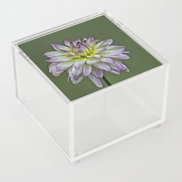 Dahlia Delight Acrylic Box