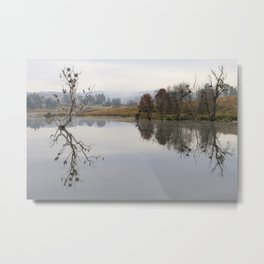 Trees and birds reflected in lake - Landscape Metal Print