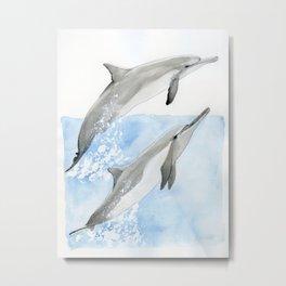 Dolphin Duo Metal Print