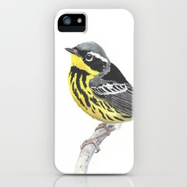 Magnolia Warbler iPhone Case