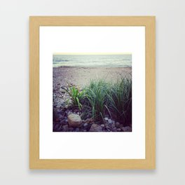 Quiet Time at the Lake Framed Art Print