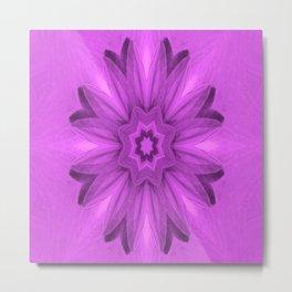 Lily in Pink... Metal Print