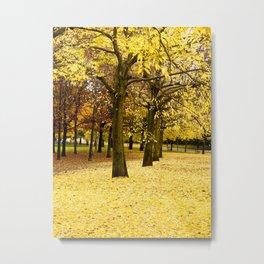 Autumn in Giardini Margherita Metal Print