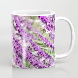 Allen's Hummingbird in Mexican Sage Coffee Mug