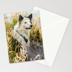 Welsh Boarder Collie Stationery Cards