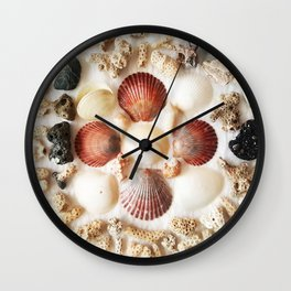 Scallops + Coral x Lucina Wall Clock