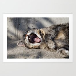 CAT - YAWNING - PHOTOGRAPHY - ANIMALS - CATS Art Print