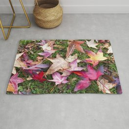 Autumn Leaves Laying on Grass Rug
