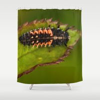 bug Shower Curtains featuring Bug by Wealie