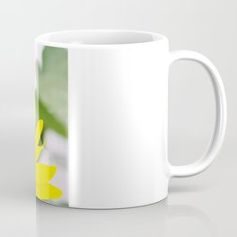 Sunflower in Flushing Coffee Mug