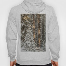 lonely pine Hoody