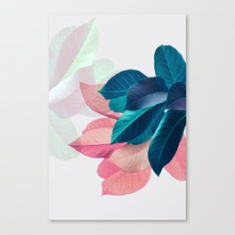 Pink and Blue Leaf Canvas Print