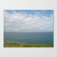 MuttonBird 2 Canvas Print