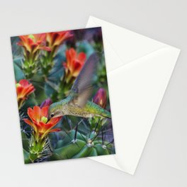 Hummingbird Sipping on Cactus Nectar Stationery Cards