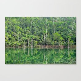 Lush Oasis Canvas Print