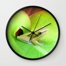 Baby Frog Wall Clock