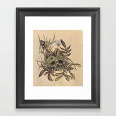 Skull with Weeds. Framed Art Print