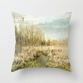 Peace and Solitude.   Throw Pillow