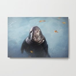 Grey Seal Metal Print