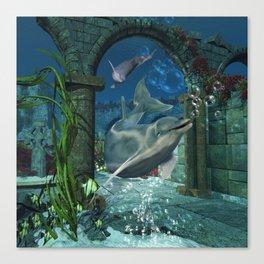 Wonderful dolphin Canvas Print
