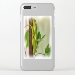 Painted Green Tree Frog Clear iPhone Case