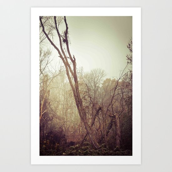 To the woods Art Print