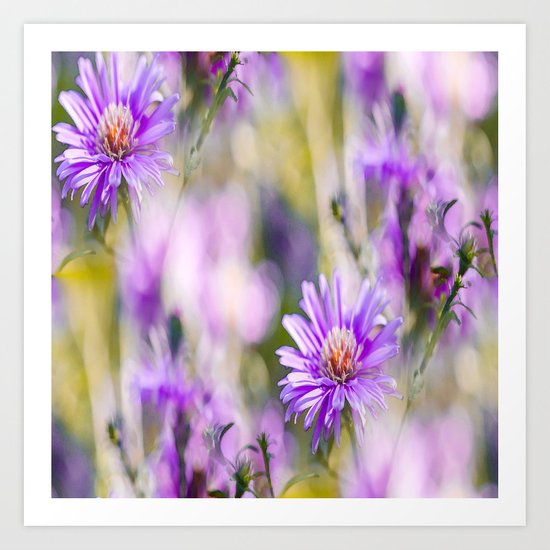 Summer dream - purple flowers - happy and colorful mood Art Print