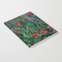Good buy my Summer Notebook