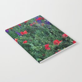 Good buy my Summer Notebook