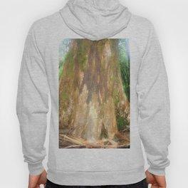 "Mountain Ash Tree (Aka ""The Big Boy"") Hoody"