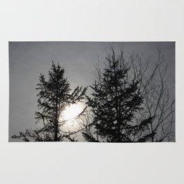Trees on Daylight Rug