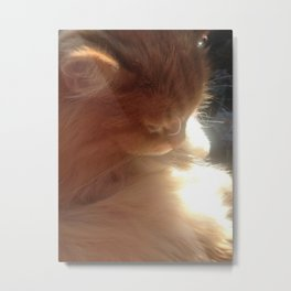 Angelic Cat Metal Print