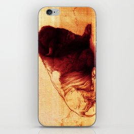 The Resting Of The Force iPhone Skin