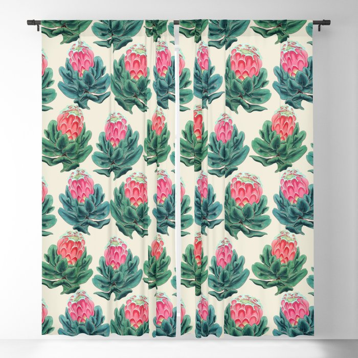 Protea flower garden Blackout Curtain