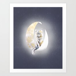 Lunatic cat Art Print