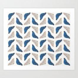 Butterfly Collage II Art Print