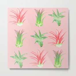 Airplants on Pink Metal Print