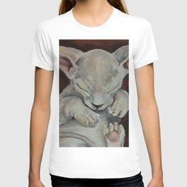 Sphynx, cat, sleeping cat T-shirt