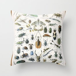 Adolphe Millot- Vintage Insect Print Throw Pillow