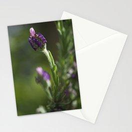 lavendula - I Stationery Cards