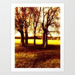 Autumnal Trees. Art Print