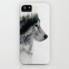 Wolf Stare iPhone (5, 5s) Slim Case