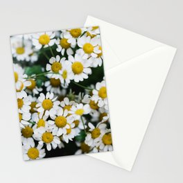 Camomile Wild Flowers Stationery Cards