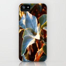 Desert Leaves II iPhone Case